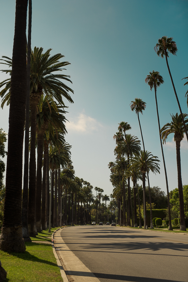 A trip to Beverly Hills is always worth it. You can just have a walk, take a few snap of fancy estates and then have a short drive to the hollywood sign or Santa Monica. Marie Bärsch, Nikon D810, Sigma Art 50mm/1.4.